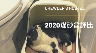 2020 五大人氣貓砂盆推薦 [豬的使用心得]