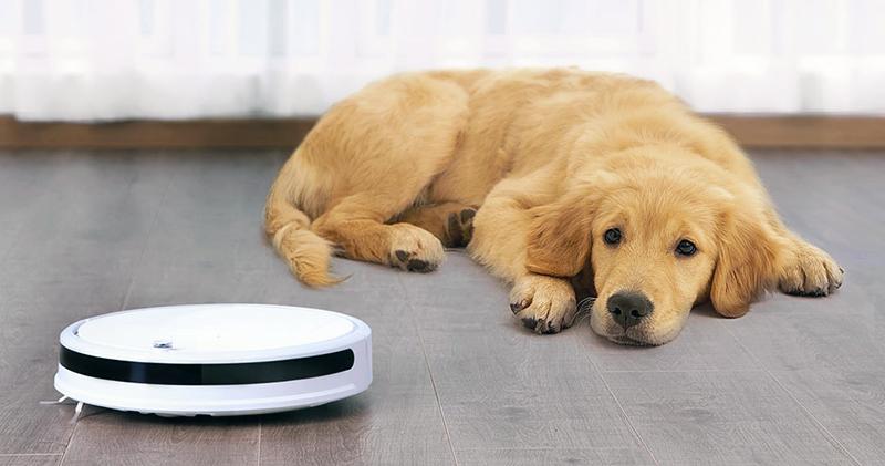 2021 寵物用人氣TOP3掃地機器人推薦與評比
