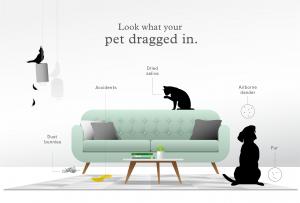 2021 七大寵物專用空氣清淨機推薦 [還你一個超清新人貓居住環境]