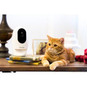 2021 四大寵物監視器評比推薦 [隨時隨地監控愛護毛孩的好幫手]