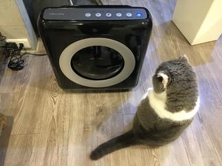 Coway寵物空氣清淨機