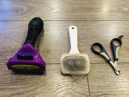 新手養貓必備用品除毛刷與指甲剪