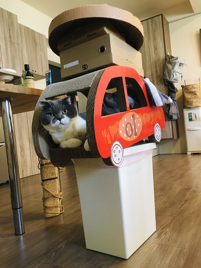 新手養貓必備用品造型貓抓板