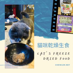 貓咪生食之冷凍乾燥生食 : Primal 凍乾與汪喵冷凍乾燥生食開箱 [豬樂食用心得分享]