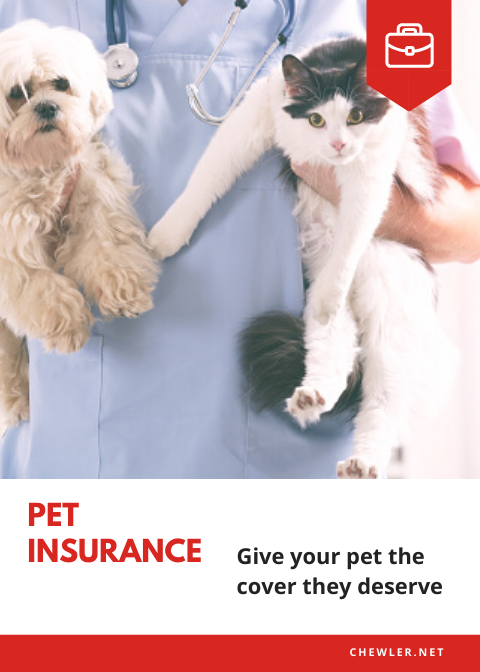 2020 八大寵物保險比較與推薦 [為自家毛孩找一份最合適的未來保障]