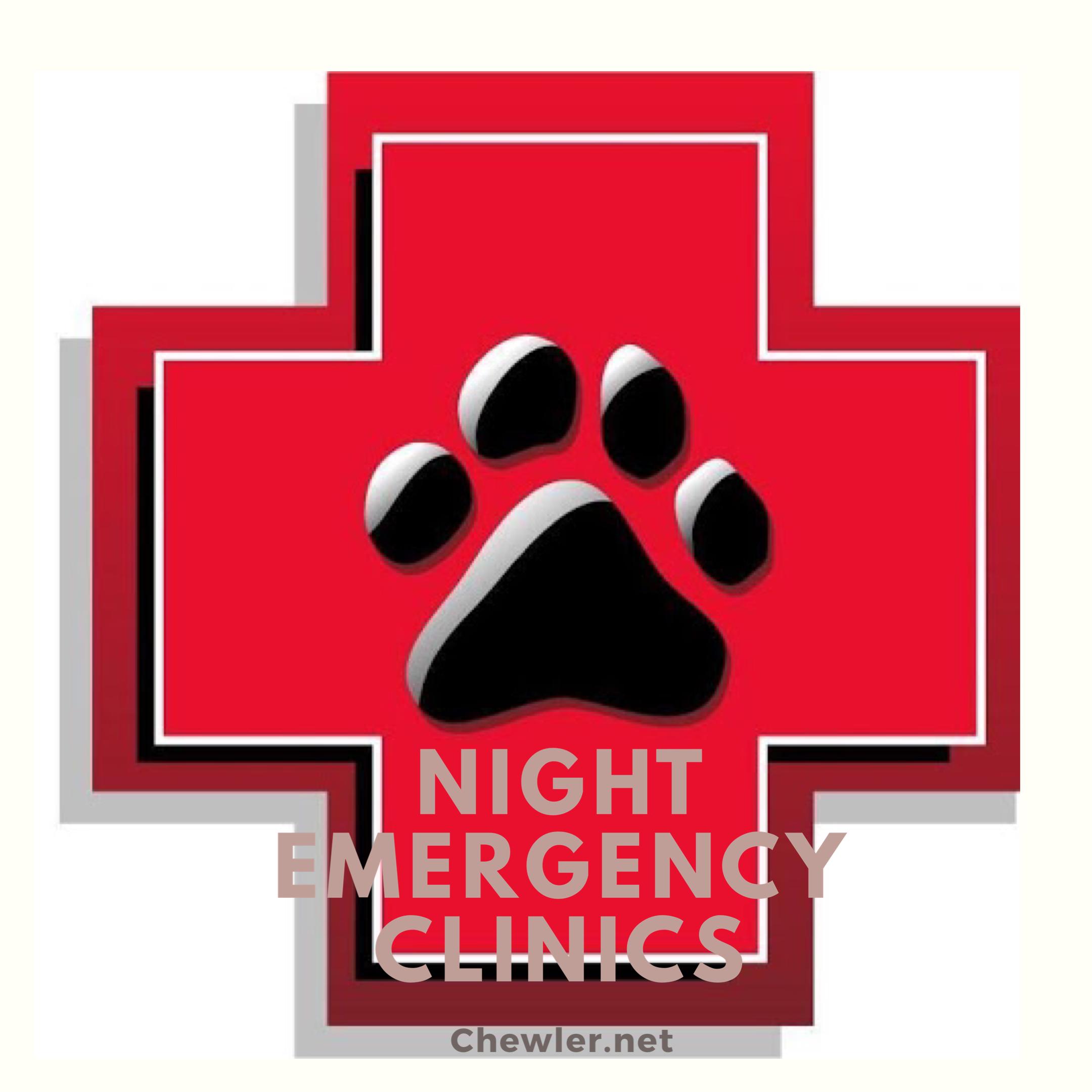 全台夜間動物醫院急診名單