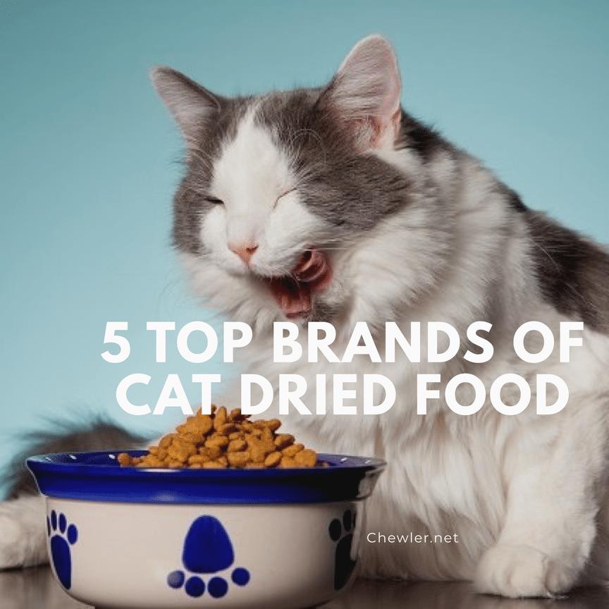 貓咪乾糧推薦