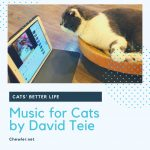 貓咪療癒音樂 [David Teie 為貓咪推出的音樂專輯:貓音樂 Music for cats,豬剛好聽完都呈現睡死狀態? ]