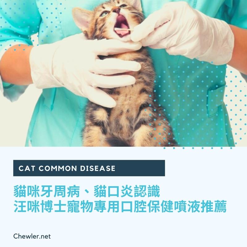 貓咪牙周病、貓口炎認識 [ 懶人貓奴汪咪博士寵物口腔清潔保健噴液好物推薦 ]