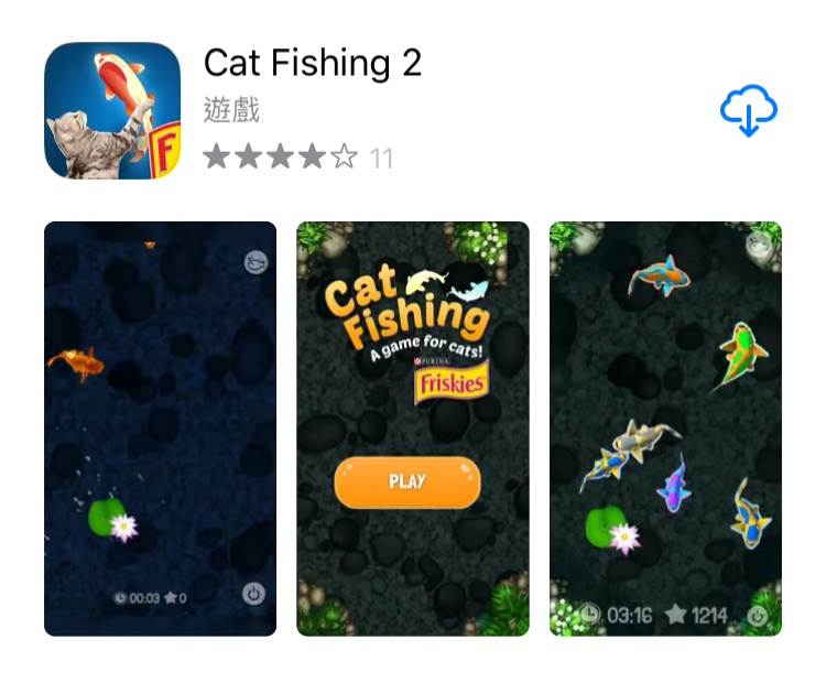 cat fishing2