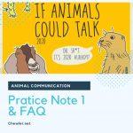 動物溝通課程筆記Note1 : 初階練習與常見問題 [ 冥想Meditation意外帶來的好處! ]