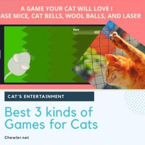 三款給貓咪玩的免費線上遊戲 (適用PAD平板APP) [ 豬樂貓後來玩到發楞懷疑貓生 ]