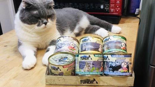 德國渴達主食貓罐