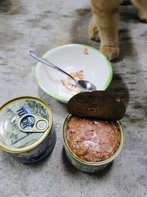 渴達貓罐鴨肉+火雞+雉雞