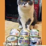 德國TUNDRA渴達主食貓罐開箱試吃與推薦