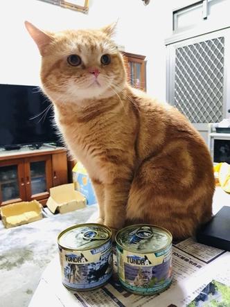 渴達貓罐火雉雞+鴨口味