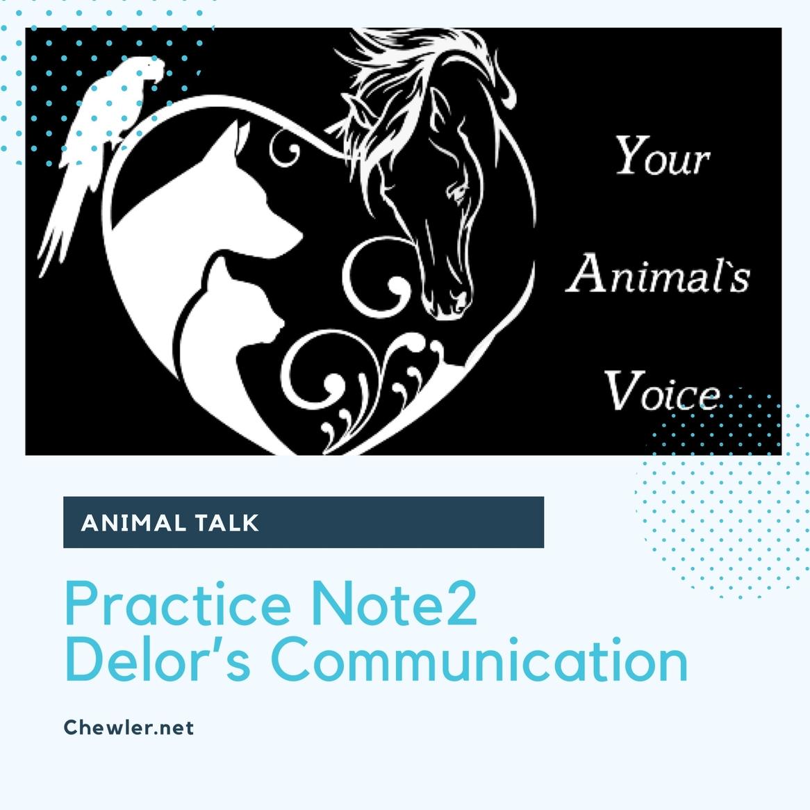 動物溝通課程筆記Note2 : 豬樂貓免費寵物溝通初體驗與心理學素養導論課程