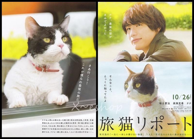 日本電影旅貓日記(旅猫リポート)觀後心得 [人貓聚散終有時,學會珍惜當下]