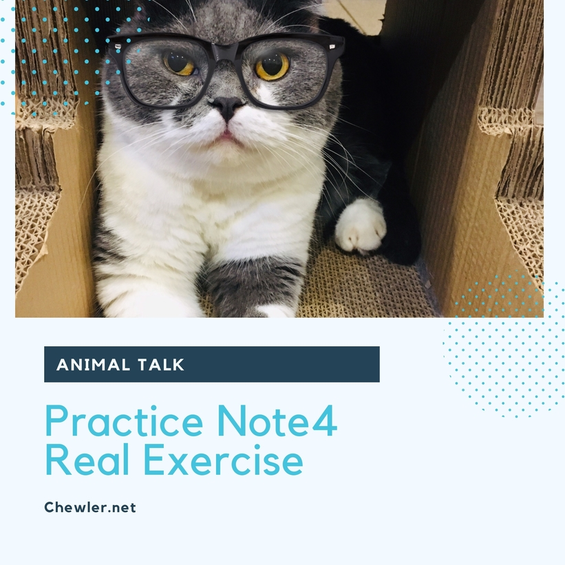 動物溝通課程筆記Note4 : 迎接動物訊息的實際練習