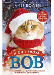 電影街貓Bob的聖誕禮物(再見街貓) A Gift from BOB觀後心得感想 [貓奴跟貓咪邊擠沙發邊吃零食必看電影]