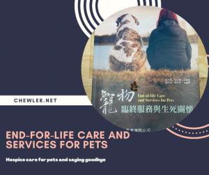 Read more about the article 高齡貓老年安養、安寧照護與貓咪老年常見疾病 [寵物臨終服務與生死關懷一書探討精華]