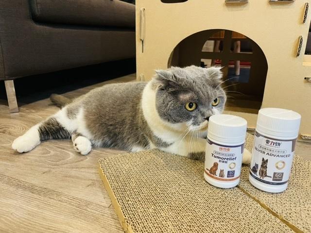 貓咪保健品骨力勁