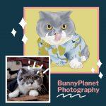 寵物攝影達人邦尼是個星球Bunny planet : 豬樂貓鎂光燈下巨星般初體驗 [毛孩爸媽們給寶貝來個專業攝影專輯留念吧! ]