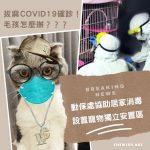 因應COVID-19疫情升溫,雙北市動保處推動確診者寵物安置方案 ! 肺炎並無證據顯示會感染家中貓狗,切勿聽信謠言胡亂遺棄毛孩 !